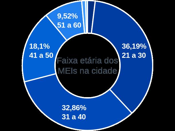 Faixa etária de MEIs na cidade de Porto Walter