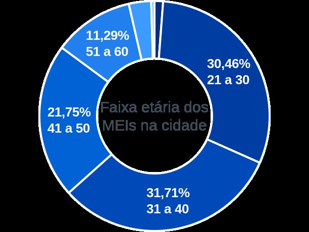 Faixa etária de MEIs na cidade de Rio Branco