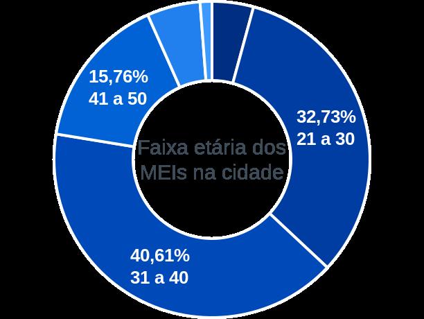 Faixa etária de MEIs na cidade de Rodrigues Alves