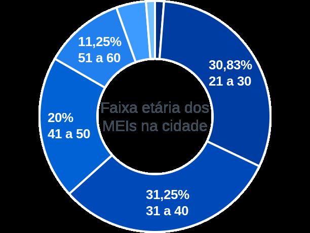 Faixa etária de MEIs na cidade de Porto Real do Colégio