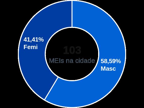 Gênero de MEIs na cidade de Silves