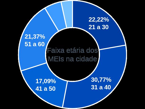 Faixa etária de MEIs na cidade de Serra do Navio