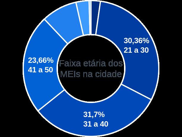 Faixa etária de MEIs na cidade de Vitória do Jari