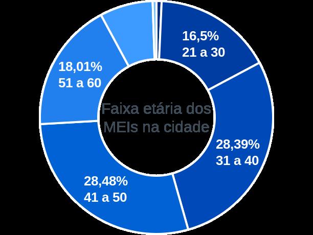 Faixa etária de MEIs na cidade de Amélia Rodrigues