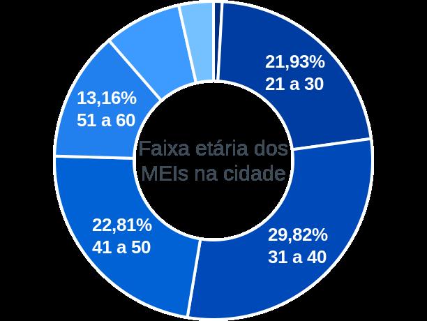 Faixa etária de MEIs na cidade de Barra do Rocha