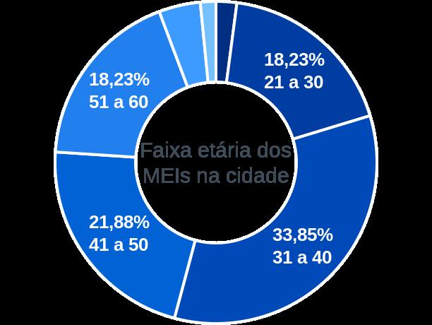 Faixa etária de MEIs na cidade de Cardeal da Silva