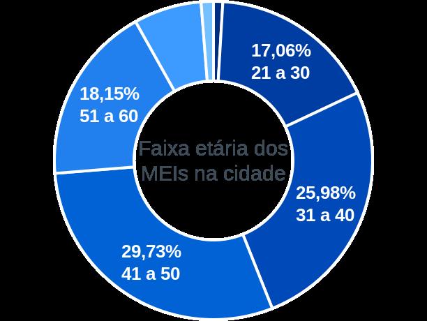 Faixa etária de MEIs na cidade de Conceição da Feira