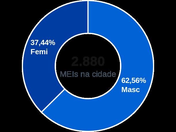 Gênero de MEIs na cidade de Conceição do Coité