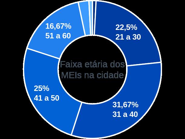 Faixa etária de MEIs na cidade de Érico Cardoso