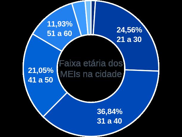 Faixa etária de MEIs na cidade de Fátima