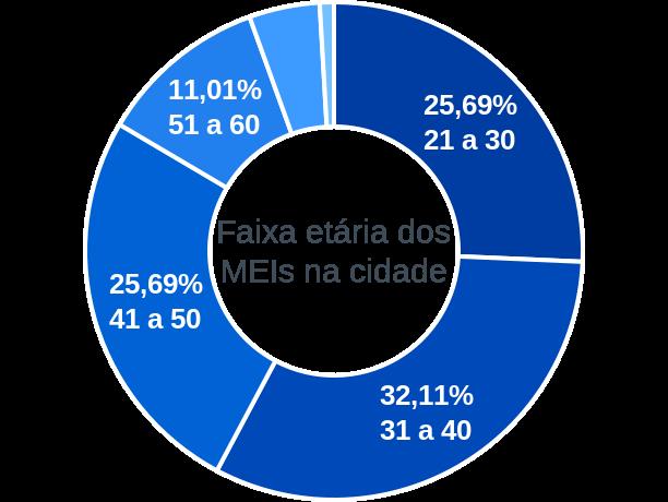 Faixa etária de MEIs na cidade de Firmino Alves