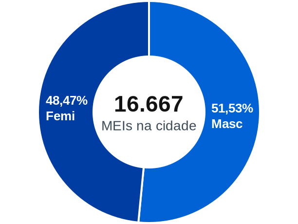 Gênero de MEIs na cidade de Lauro de Freitas