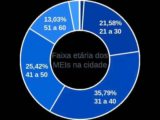 Faixa etária de MEIs na cidade de Luís Eduardo Magalhães