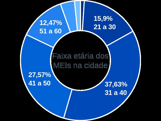 Faixa etária de MEIs na cidade de Palmeiras