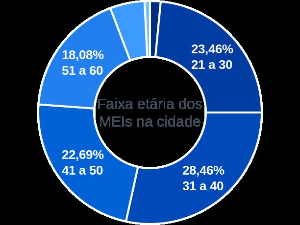 Faixa etária de MEIs na cidade de Pau Brasil