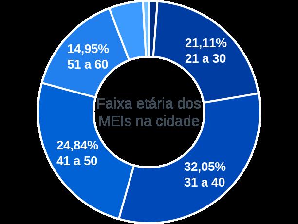 Faixa etária de MEIs na cidade de Porto Seguro