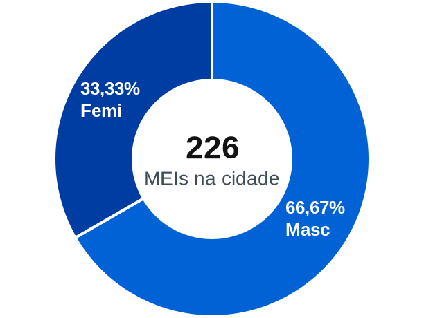 Gênero de MEIs na cidade de Presidente Jânio Quadros