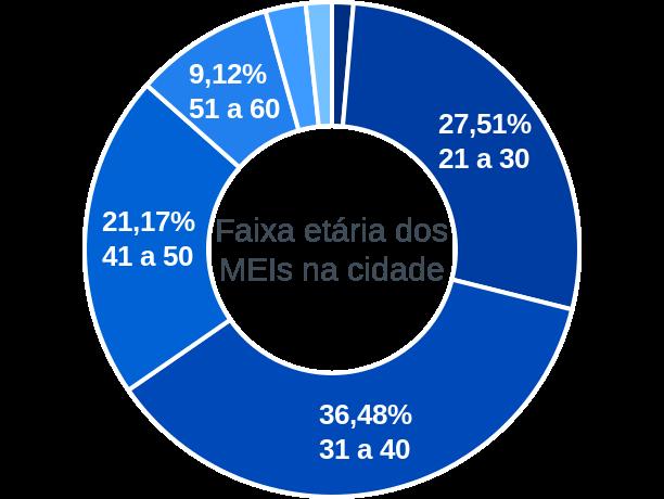 Faixa etária de MEIs na cidade de Presidente Tancredo Neves
