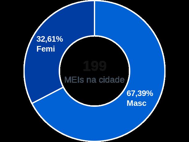 Gênero de MEIs na cidade de Rafael Jambeiro