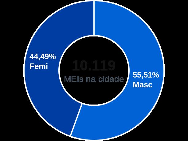 Gênero de MEIs na cidade de Teixeira de Freitas