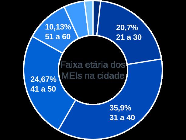 Faixa etária de MEIs na cidade de Wenceslau Guimarães