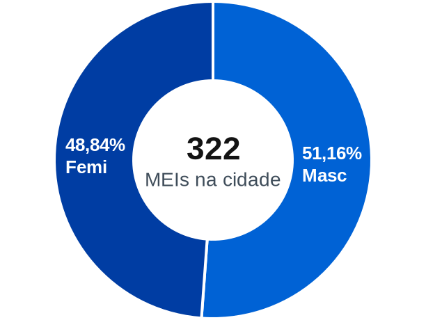 Gênero de MEIs na cidade de Farias Brito