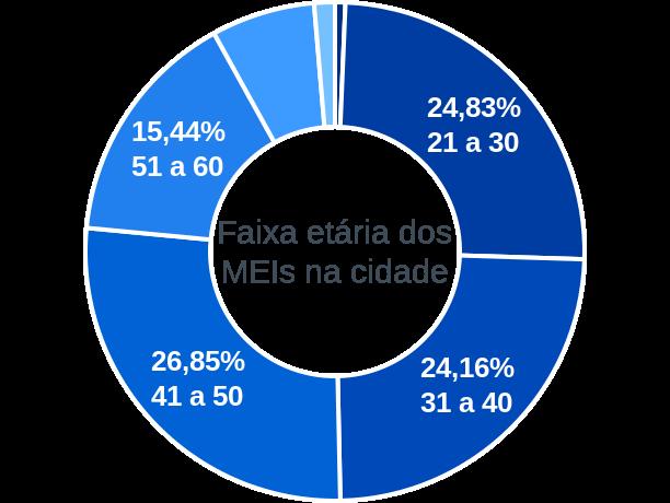Faixa etária de MEIs na cidade de Pires Ferreira