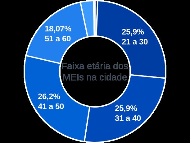Faixa etária de MEIs na cidade de São Luís do Curu