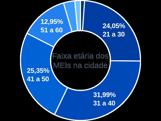 Faixa etária de MEIs na cidade de Várzea Alegre
