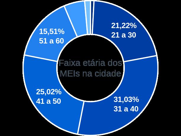 Faixa etária de MEIs na cidade de Domingos Martins