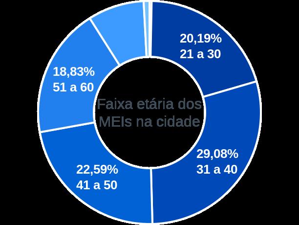 Faixa etária de MEIs na cidade de João Neiva