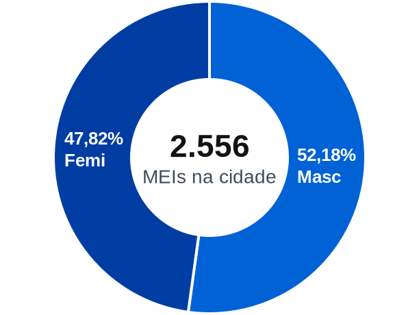 Gênero de MEIs na cidade de São Gabriel da Palha