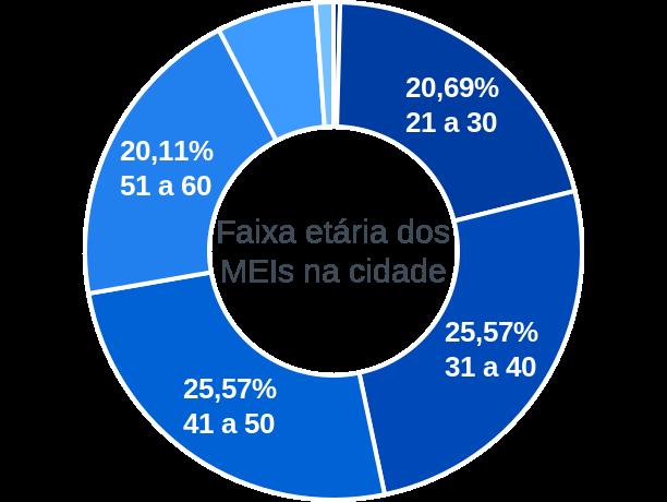 Faixa etária de MEIs na cidade de São José do Calçado
