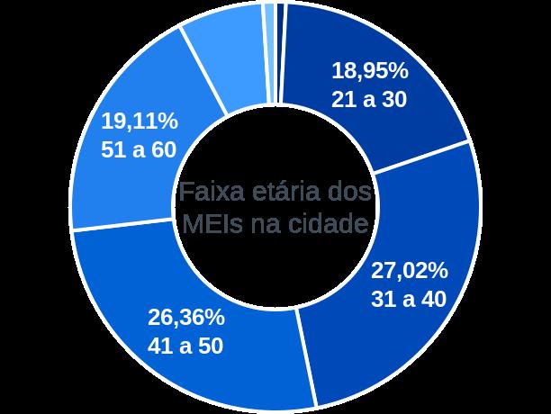 Faixa etária de MEIs na cidade de São Roque do Canaã