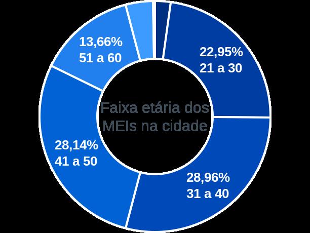Faixa etária de MEIs na cidade de Vila Pavão