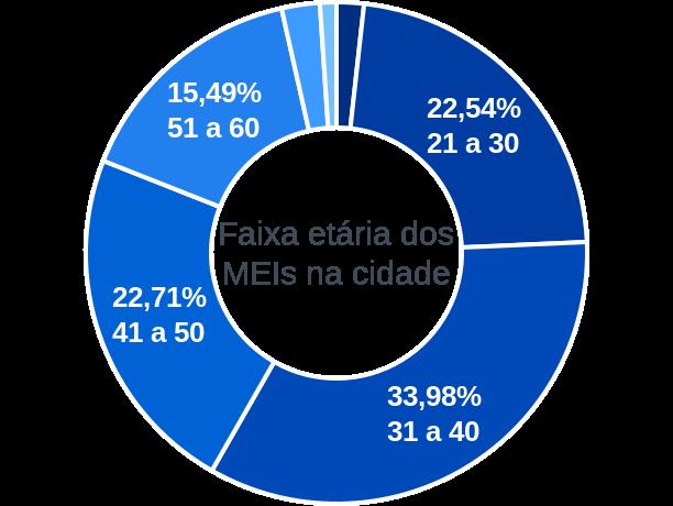 Faixa etária de MEIs na cidade de Vila Valério