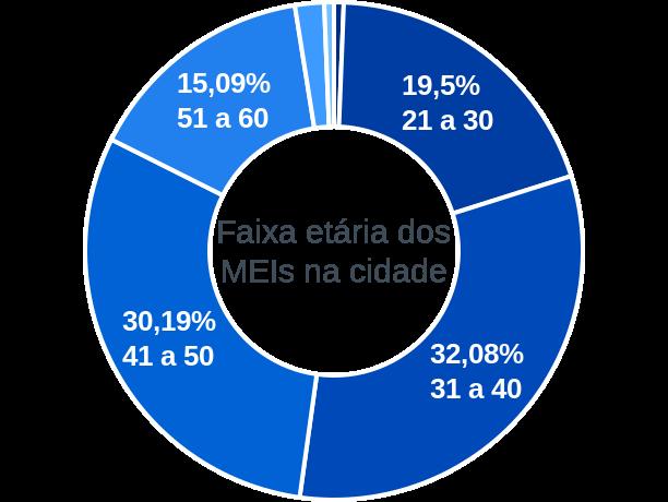 Faixa etária de MEIs na cidade de Água Fria de Goiás