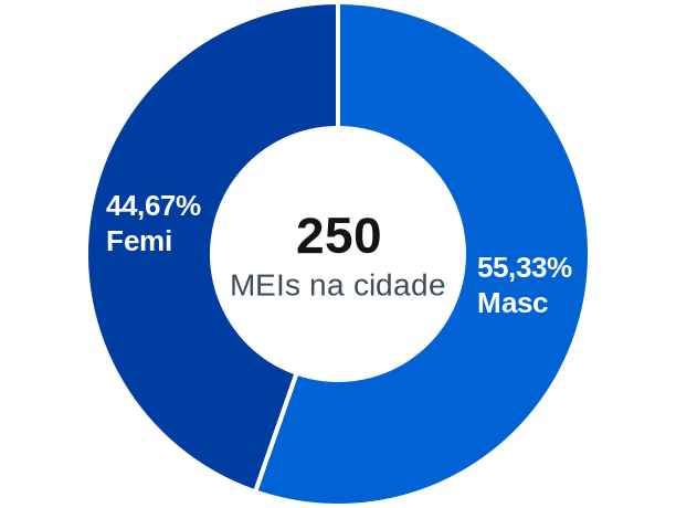 Gênero de MEIs na cidade de Araçu