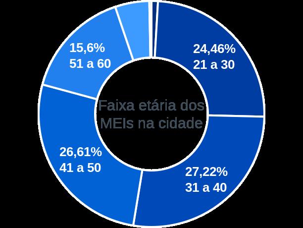 Faixa etária de MEIs na cidade de Bom Jardim de Goiás