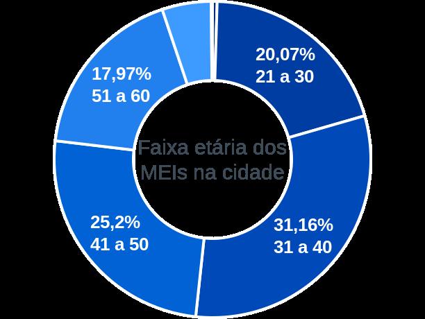 Faixa etária de MEIs na cidade de Bom Jesus de Goiás