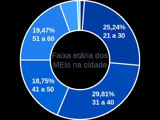 Faixa etária de MEIs na cidade de Cachoeira Alta