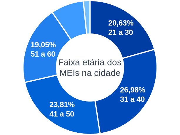 Faixa etária de MEIs na cidade de Cachoeira de Goiás