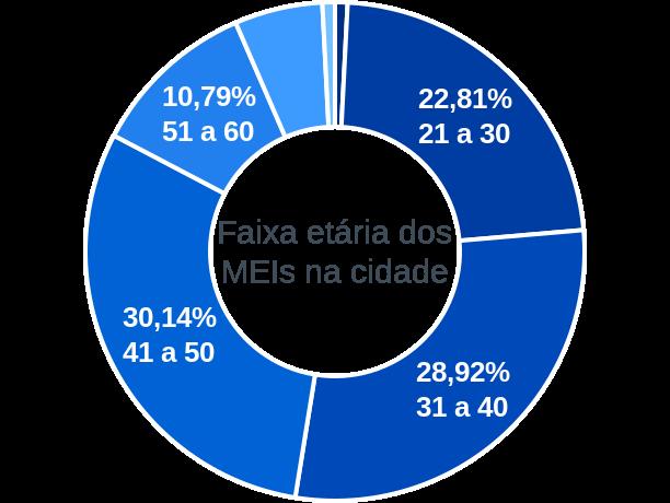Faixa etária de MEIs na cidade de Campo Alegre de Goiás