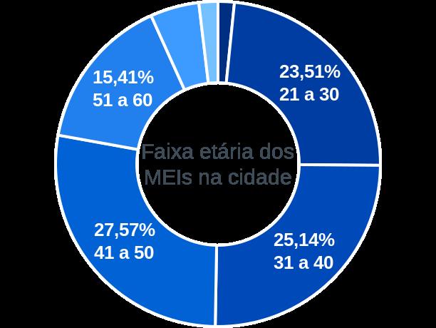 Faixa etária de MEIs na cidade de Carmo do Rio Verde