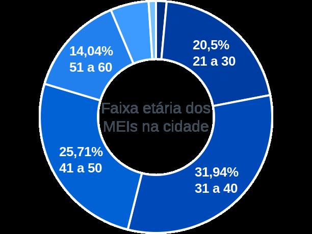 Faixa etária de MEIs na cidade de Cocalzinho de Goiás