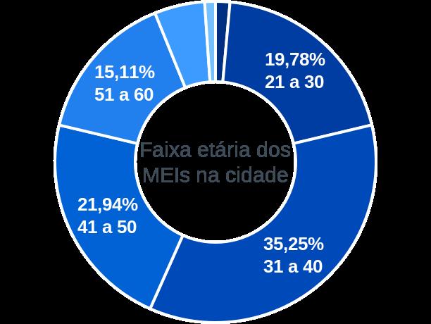 Faixa etária de MEIs na cidade de Flores de Goiás
