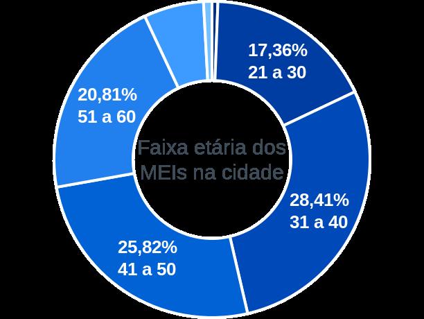 Faixa etária de MEIs na cidade de Goiás