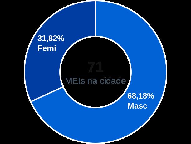 Gênero de MEIs na cidade de Guarani de Goiás