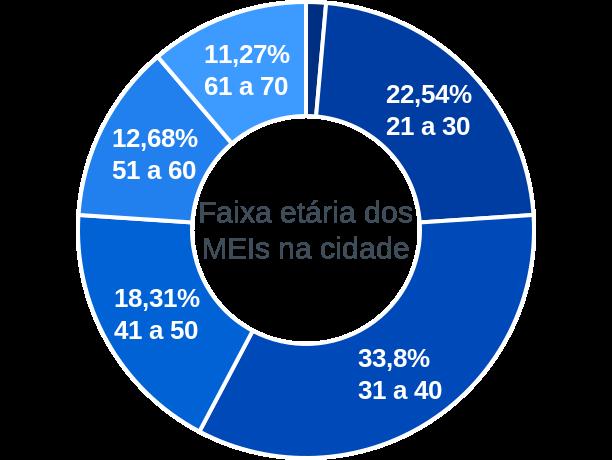Faixa etária de MEIs na cidade de Guarani de Goiás