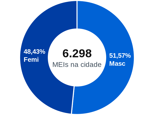 Gênero de MEIs na cidade de Itumbiara